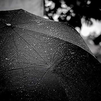 Rainstorm Puddle