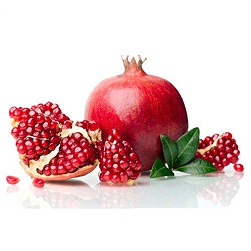 E-Aroma für E-Liquide I Apfel/Granatapfel I 10 ml I Ohne Nikotin I Aromakonzentrat zum Mischen mit Basen I Herrlan - Made in Germany