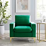 Hbaid Velvet Accent Chair, Sofa Chairs Comfy Single Sofa High-Back Club Armchair for Bedroom Reading Mid-Century Modern Living Room Chair (1 Green)