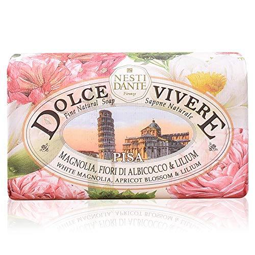 Nesti Dante Dolce Vivere Pisa, per stuk verpakt (1 x 0,25 kg)