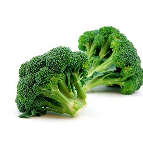 AchidistviQ 500 Stück Broccoli Brassica Oleracea Blumenkohl Samen Nahrhaftes Gemüse Brokkolisamen