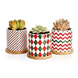 Greenaholics Succulent Pots - 3 Inch Ceramic Plant Pots with Bamboo Trays, Perfect Christmas Decorations, Set of 3, Red&Green&White