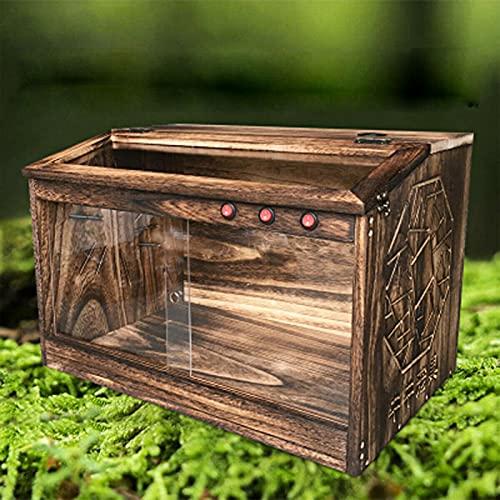 Caja de alimentación de insectos, caja de alimentación de reptiles Caja de cría de reptiles transparente para arañas, lagartos, escorpiones, ciempiés, ranas cornudas, escarabajos
