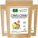 MoriVeda® - Camu Camu Cápsulas Extracto 8:1 con 50% de vitamina C natural (360 o 120 piezas) - producto de calidad vegana (3x120 Cápsulas)