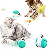 Interactive Cat Chasing Toys for Indoor Cats, Kitten Chaser Toys with Feather Catnip Ball, Tumbler Balanced Exercise Wheel Toy for Cats Kitten Chasing Hunting Playing (Blue-Feather & Ball)