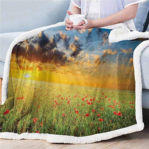 ParadiseDecor 50'x65' Poppy Queen Size Blanket Throw Air Conditioner Cover Blanket Freshening Sky View with Grass and Poppies Against Sunset Horizon Countryside Red Green Blue
