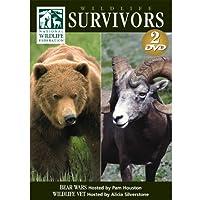 Wildlife Survivors: Bear Wars [DVD]