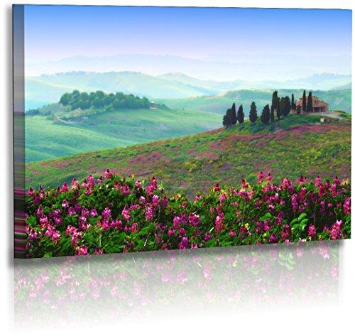 Premium - Acrylglas - Landschaftsbilder - Naturbilder - Sonnenuntergang - Italien - Toskana - Frühling - Landschaft - Bilder - Wandbilder XXL - Bild - Acrylglasbild - Glasbild (120 cm x 70 cm)