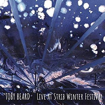 Live at Strib Winter Festival