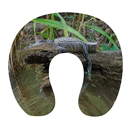 CIKYOWAY Almohada Viaje,Louisiana Honey Island Swamp Pantano de cocodrilo Americano,Espuma de Memoria cojín de Cuello,Almohadas de Acampada,Soporte de Cuello para Viaje Coche