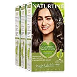 Naturtint Coloración. Tinte sin Amoniaco.100% Cobertura de Canas. Ingredientes Vegetales. Color Natural. 4G Castaño Dorado. Pack de 3