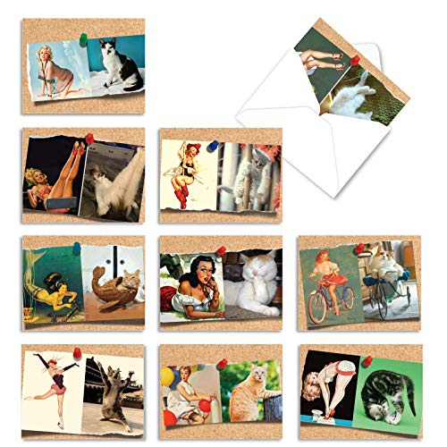 The Best Card Company - 10 Blank Funny Greeting Cards for Women (4 x 5.12 Inch) - Boxed All Occasion Assortment - Cats And Chicks M6484OCB