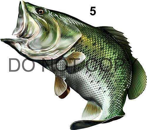 Large Mouth Bass Beautiful Fish Decal for Your Boat, Vehicle, Etc. Many Sizes and Styles Available 12' to 40'…