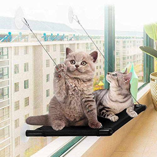 Asiento para Mascotas Duradera