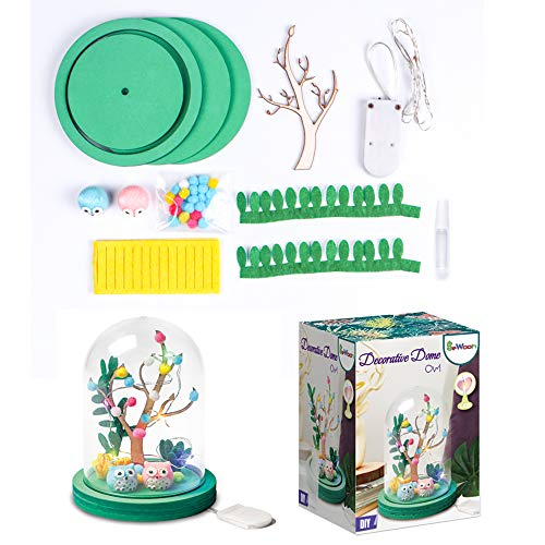 Gbrand Crafts for Kids Ages 4-12,Creativity For Kids Grow-Children DIY Make Their Own Fairy Owl Decorative Ornaments Night EDUCATIONAL KIT-Beautiful Shining Lights