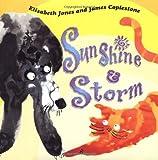 Sunshine & Storm