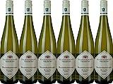 Staatsweingut Freiburg Muskateller VDP.Ortswein 2019 Trocken (6 x 0.75 l)