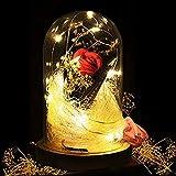 KIPIDA La Belle et la Bête Rose,Dure pour Toujours Rose,Rose LED Verre de Lumière Rose Dôme en Verre et Soie Rouge Decoration Saint Valentin Anniversaire Cadeau de fête des mères