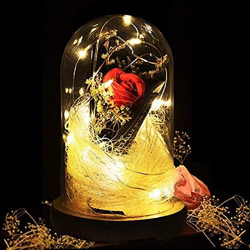 KIPIDA Rose Geschenk Kit für Hochzeit, Die Schöne und das Biest Rose Glaskuppel Künstlich Rose Lampe LED Licht für Frau,Freundin,Jahrestag,Geburtstag Geschenk