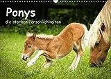 Ponys, die starken Persönlichkeiten (Wandkalender 2020 DIN A3 quer): Shettys und Shettymixe sind zu den verschiedenen Jahreszeiten zu sehen. (Monatskalender, 14 Seiten ) (CALVENDO Tiere)