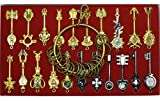 Cosplay Fairy Tail Keys New Collection Set of 21 Golden Zodiac Keys and Keyring,Blade Lucy Natsu Dragneel Heart Keychain Pendant (White Logo)