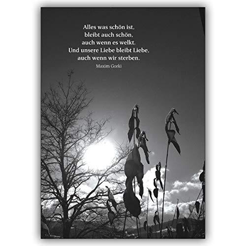 16 Stück: Bewegende Trauerkarte mit einem Maxim Gorki Zitat als Beileidsspruch • edle Premium Beistandskarte für die Hinterbliebenen