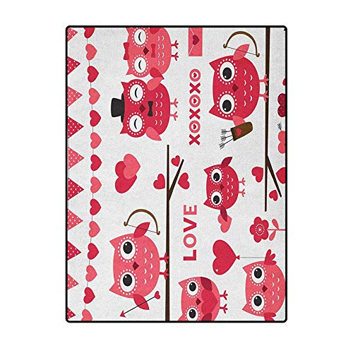 Animal Christmas Bathroom Rugs Patio Rugs for Kids, Elders, and Dogs Owls Image with Romantic Elements Arrow Eyesight Partners in Amour Artful Design Red White 3 x 5 Ft