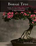 Bonsai Tree: How to Culture and Care