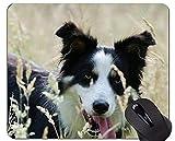 Yanteng Mousepad de los Perros de Pastor alemán, Mousepad de la Base de Goma Antideslizante del Border Collie