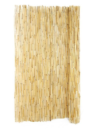 FOREVER BAMBOO Reed Fencing 6 ft. H x 16 ft. L (2 Pack Bundle)