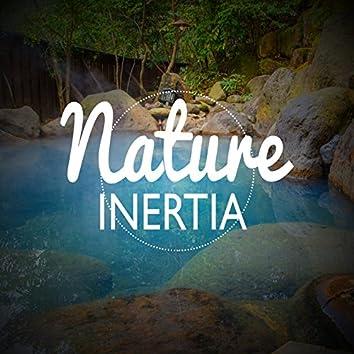 Nature: Inertia