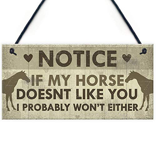 Meijiafei Funny Horse Gifts for Women Hanging Sign Horse Gifts for Girls Horse Accessories Cute Country Home Accessory Gift Sign for Horse Lovers 10
