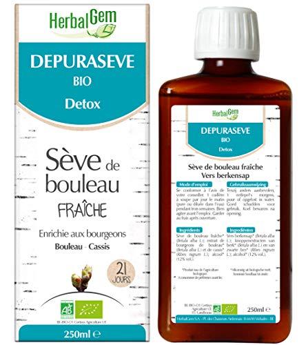 HerbalGem|Dépurasève|Favorise l'Élimination des Toxines|A base de Sève de Bouleau Fraîche|250 ml