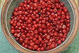 Roter Pfeffer, Rosa Beeren Größe 100g im Beutel