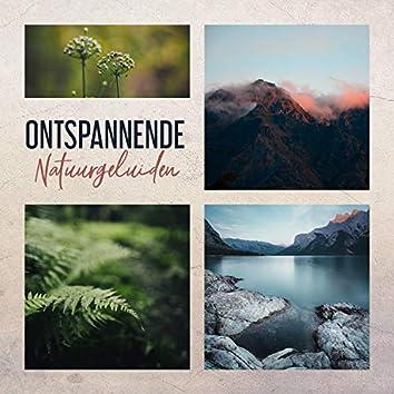 Ontspannende Natuurgeluiden: Muziek voor Rust, Ontspanning, Meditatie en Diepe Slaap