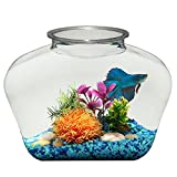 Koller Products 2 Gallon Fish Bowl - BL20LPET