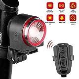 Edinber Smart Brake Sensor Bike Tail Light USB Charging Motorcycle Bike Alarm with Remote Waterproof Bicycle Security Cycling Alarm