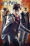 Close Up Harry Potter Poster und die Heiligtümer des Todes