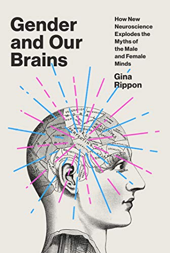 Image of Gender and Our Brains: How New Neuroscience Explodes the Myths of the Male and Female Minds