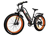 Addmotor MOTAN Women Electric Mountain Bike 26 Inch Fat Tire Full Suspension 500W Motor Bicycle...