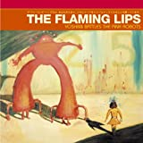 flaming lips do you realize song quotes