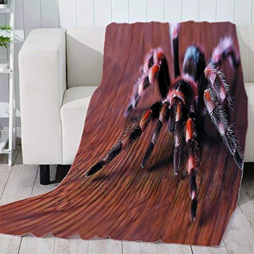 ZFSZSD Kuscheldecke Horror & Spinne Decke als Sofadecke Weiche Warme Couch Decken Sofa Decken Flauschige Wohndecke Schlafdecke 59x78.7 inch