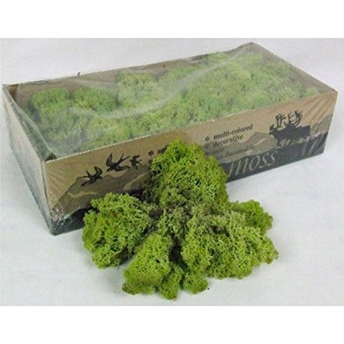 Moss - Norwegian Reindeer - Natural Preserved Dried - 20 Colours - Choose Weight (Olive Green - Moss, 25 Grams)