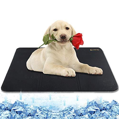 WORLD-BIO Tappetino di Raffreddamento per Cani da Compagnia, Cuscino Freddo Materasso Lavabile per Cuccioli di Animali Domestici, Cuscinetti Gatti per Cuccia, Casse e Letti Estivi - 38.9'' x 22.4''