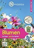 Blumen, Gräser und Kräuter (Naturdetektive: Wissen und Beschäftigung für kleine Naturforscher ab 6 Jahren)