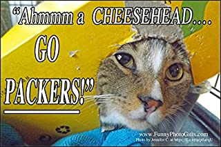 CHEESE HEAD CAT, 1 Small funny photo fridge magnet, refrigerator, humorous meme decorative magnetic sign plaque print, TABBY CAT ROOTS FOR HIS FAVORITE WISCONSIN FOOTBALL TEAM.