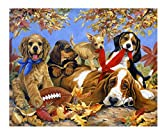 YKCKSD Puzzles for Adults 1000 Pieces, Rugby Et Chien Jigsaw Puzzles Enfants