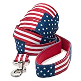 American Flag Dog Leash (Large)