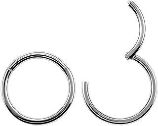 Fishfly 2 Pack of Stainless Steel Cartilage Hoop Earrings for Men Women Nose Hoop Ring Helix Septum Daith Lip Tragus Piercing Ring