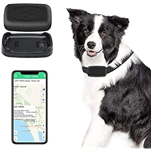 MVOWIZON GPS Pet Tracker, Real-Time Cat Dog Locater & Activity Monitor, Cat Dog Tracking Device with Unlimited Range